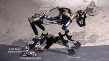 Роботы-обезьяны могут стать первыми колонистами Луны