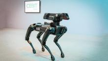 Робособака Spot Mini на улицах в Ганновере
