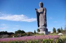 Усику Дайбуцу - самая высокая бронзовая статуя