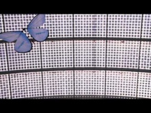Embedded thumbnail for Бионика: роботы-бабочки