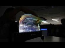 Embedded thumbnail for Гибкий прозрачный дисплей от LG