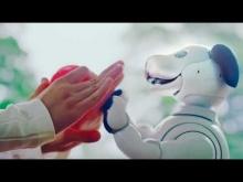 Embedded thumbnail for Симпатичная собачка-робот Aibo от Sony