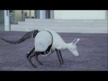 Embedded thumbnail for Festo Кенгуру - бионический робот